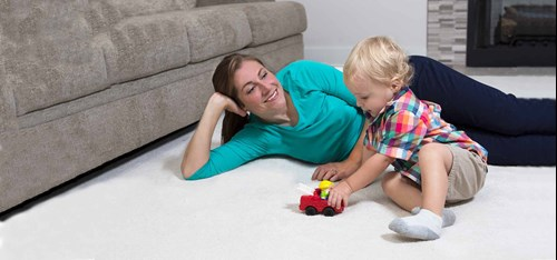 Professional Carpet Cleaning Fraser CO
